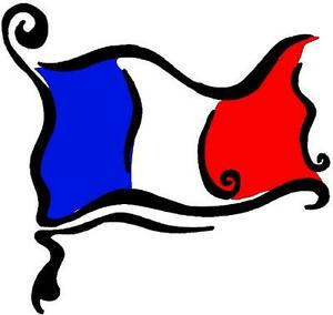 UNIVERSITY STUDENTS! DO YOU NEED HELP WITH FRENCH ASSIGNMENTS? London Ontario image 1