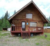 4 Season cabin for sale at Turtle Lake!!!
