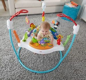 Fisher-Price Animal Activity Jumper