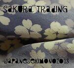 japanesekimono2013