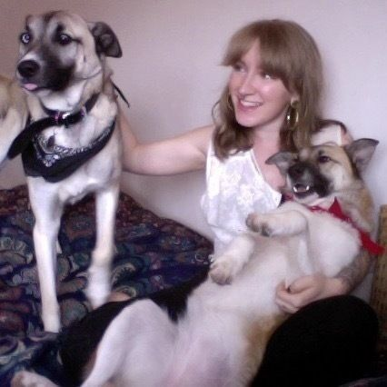 Available Dog Walker / Pet Sitter / Personal Assistant / Help ...