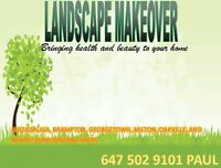 YELLOW GRASS? GREEN GRASS IN NO TIME*SECRETS LANDSCAPERS HIDE*