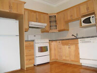 RENOVATED CHARMING 4 1/2 FOR RENT IN THE PLATEAU