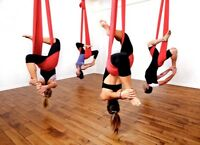 Beginner Aerial Yoga, Pole Fitness & Aerial Bootcamps Starting!!