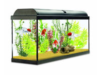110 litre fish tank