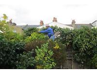 Garden Maintenance & Outdoor Services