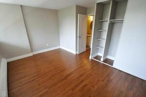 Contemporary, Open Concept, 2 bedroom suites. Newly Remodeled! Cambridge Kitchener Area image 6