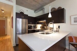 Beautiful one bedroom loft on canal ST HENRI(st ambroise)