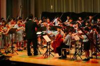 Cello and Violin Lessons