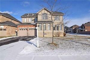 W3466382-Absolutely Gorgeous Fully Detached 4+Bed Corner Lot