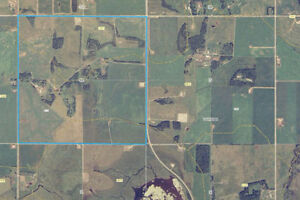 Farmland with 2 yard sites, Ponoka, AB West