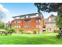 Amazing studio flat Ideal for single and couple available now
