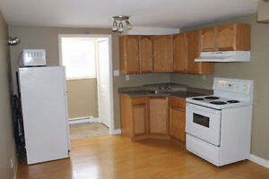 newer 1 bedroom - a professional or responsible student only.