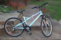 21 SPD.RALEIGH  MOUNTAIN  BIKE FRONT SUSPENSION IN EXCELLENT CON