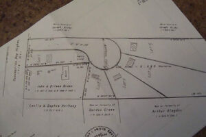 2.3 Acres lot/land for sale, Seal Cove, across from CONA