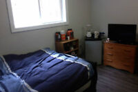 New, Fully Furnished, All Inclusive Room for Summer Sublet