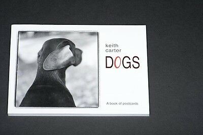 CL DOGS: A Book of Postcards by Keith Carter