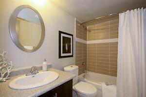 Newly Renovated - Clean & Quiet Building Kitchener / Waterloo Kitchener Area image 3