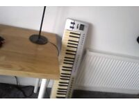 Rarely Used Musical Keyboard with keyboard stand
