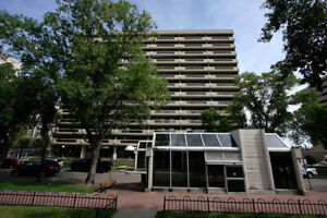 Large 1 Bedroom Downtown Apartment (Le Jardin)