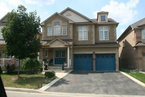 Furnished Bachelor Basement suite in new large home Brampton