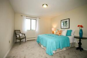 Renovated Spacious Clean+Pool+Private Balcony!