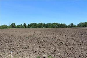 10 Acres land with house for sale in Claedon