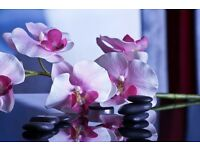 Chinese Massage Westcliff your number one choice