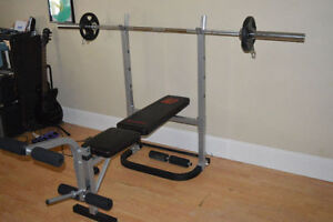 Workout Bench- Great Condition Cambridge Kitchener Area image 1