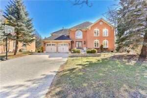 **STUNNING EXECUTIVE HOME WITH INGROUND POOL - IN NEWMARKET***
