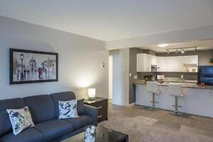 2 BDRM APARTMENT FOR RENT SW EDMONTON - Holiday Price Sale! Edmonton Edmonton Area image 3