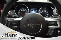 Miniature 12 Voiture American used Ford Mustang 2017