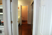 Executive 1 Bedroom For Rent
