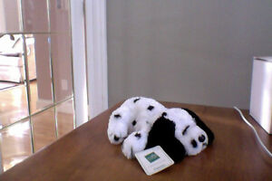 OODLES OF STUFFED TOYS **PERFECT CONDITION