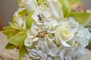 Professional wedding photography services available! Sarnia Sarnia Area image 4