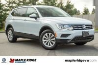 2019 Volkswagen Tiguan Trendline AWD, ONE OWNER, NO ACCIDENTS, G Vancouver Greater Vancouver Area Preview