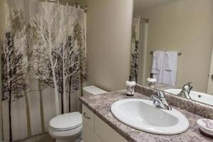 2 BDRM APARTMENT FOR RENT SW EDMONTON - Holiday Price Sale! Edmonton Edmonton Area image 5