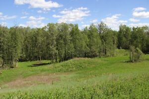 Beautiful 6.62 Acres For Sale in Athabasca
