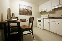 Think Big! Large-Bright-Updated-Near Downtown!