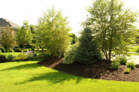 Fall Clean Up, Retaining Walls, Mulch, Grass Cutting and Gardens