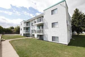 Bright and Sunny Top Floor Apartment Available!