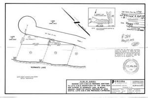 LAKE FRONT LOT 25 MIN FROM CITY  (MT. UNIACKE ) $49,900
