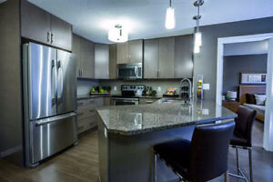 Spacious 1 bedroom + den and 2 bathrooms condo for rent 935 sq