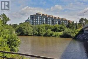 Highly Desirable 1Br 1Wr Bronte Harbour Club 2511 LAKESHORE RD W