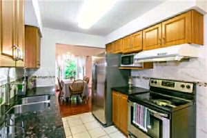 Finch/Midland 3 bedrooms for rent