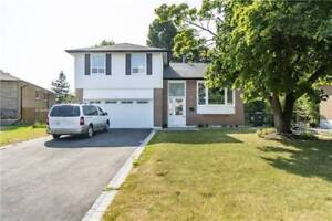 Gorgeously Renovated Sidesplit For Sale in Brampton (7D)