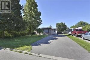 37 FLAVIAN CRES Brampton, Ontario