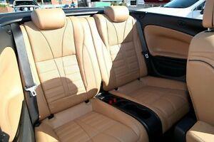 2015 Holden Cascada CJ Launch Edition Silver 6 Speed Automatic Convertible Waitara Hornsby Area Preview