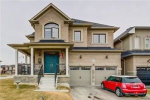 AMAZING 5+3 Bedroom Detached House @BRAMPTON $1,099,999 ONLY