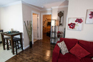 Fully Reno'd 1 Bedroom Furnished Condo for Rent (All-Inclusive)